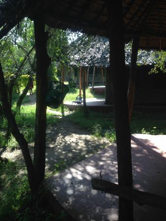 Miti Mingi Eco Camp: Vista desde la tienda