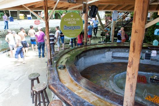 Tlos Yakapark Trout Restaurant Cafe & Bar: Fish swimming in the bar at Yakapark Trout Restaurant
