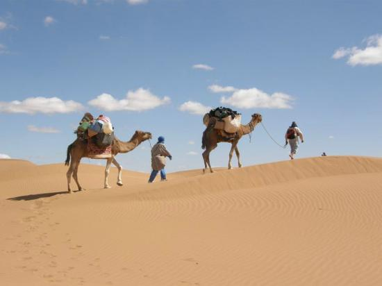 Explore Marocco Travel - Day tours