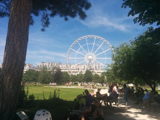 Vista para a roda gigante que tem perto picture of for Ajedrez gigante para jardin