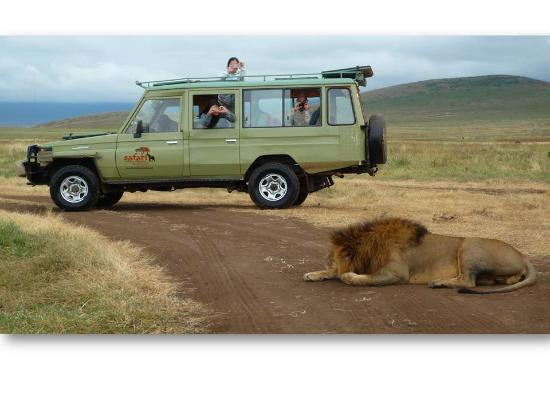 Safari Trackers Adventure - Day Tours
