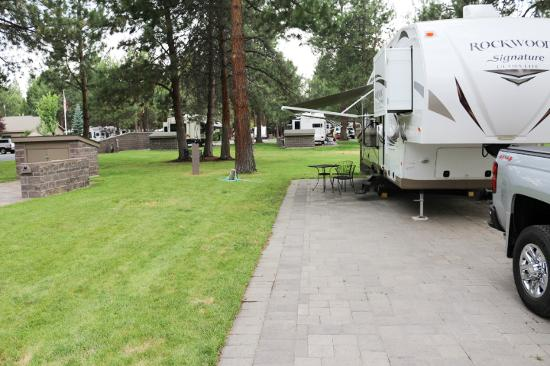Crown Villa RV Resort: Our space, but typical of all spaces.