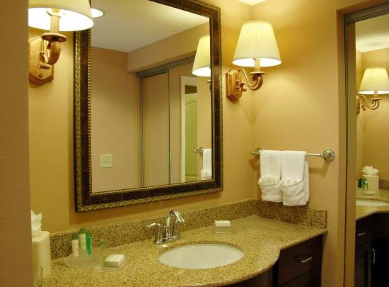 Homewood Suites by Hilton Jacksonville Downtown/Southbank: Vanity