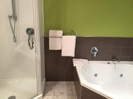 Park View Motor Lodge: Shower and tube