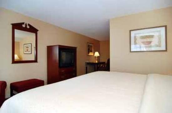 Atlantic Beach Hotel : Studio Suite
