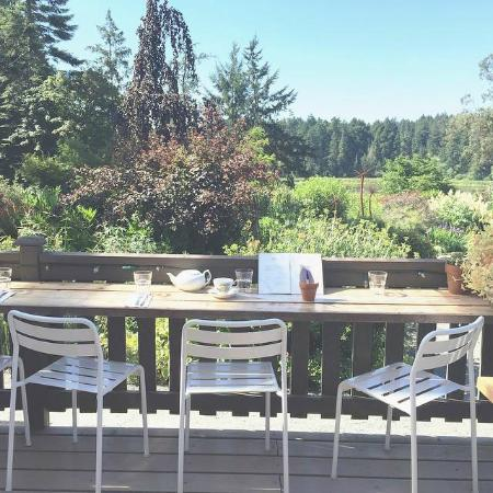 Nourish Kitchen & Cafe : Nourish in the Garden - 505 Quayle Road, Saanich - Garden View