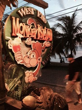 Monkey Island Beach Cafe: Good eats