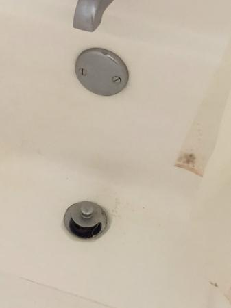 Anna Maria Island Beach Resort: Non cleaned Bathtub w/mold