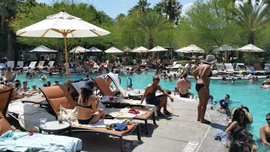 Bikini pool picture of riviera palm springs resort palm for The riviera palm springs ca