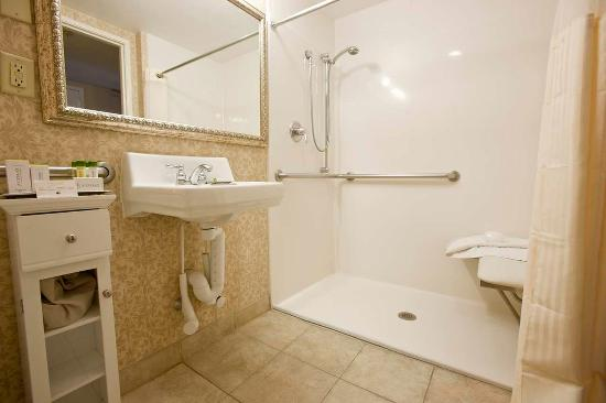 ADA Accessible Bathroom with a sit down showerPicture of