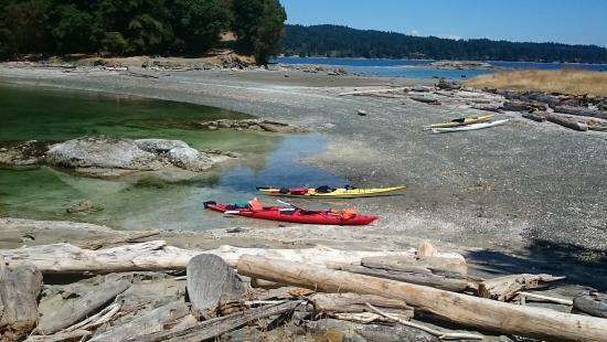 Wildheart Adventures: Kayaking in Stewart Cannel