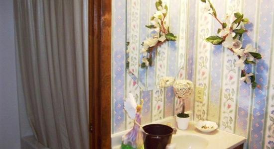 Country View Inn: Bathroom