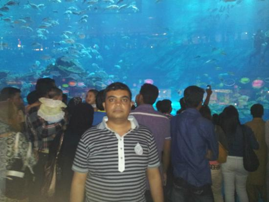 Dubai mall inside large aquarium