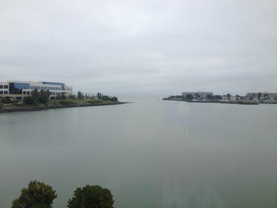 Residence Inn San Francisco Airport/Oyster Point Waterfront : The view!