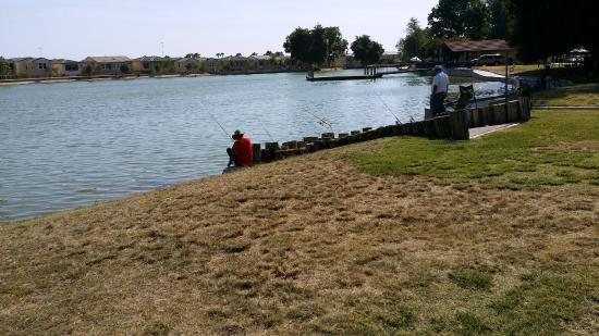One of the 3 or 4 lakes picture of cucamonga guasti for Guasti park fishing