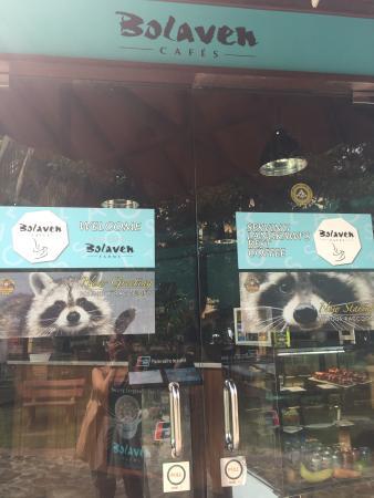 Bolaven Cafes Langkawi: 입구