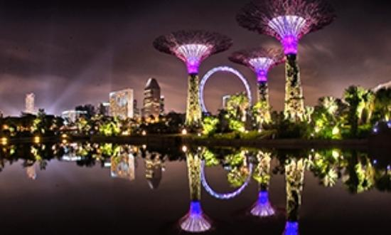 beautiful night scene of gardens by the bay