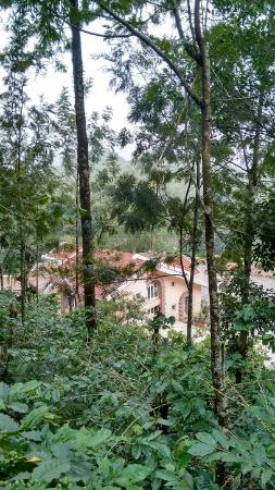 Doopadcool Homestay: View of the property from top of the hill