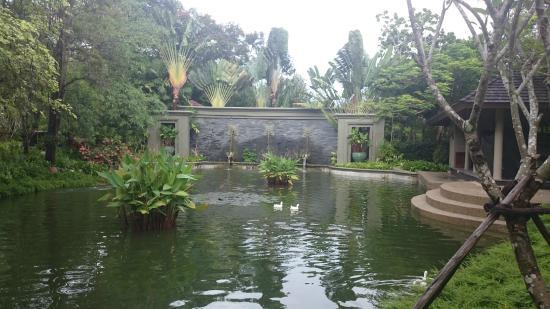 Anantara Layan PhuketResort : территория