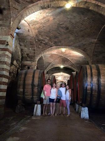 Villa  Vistarenni: Old cellars