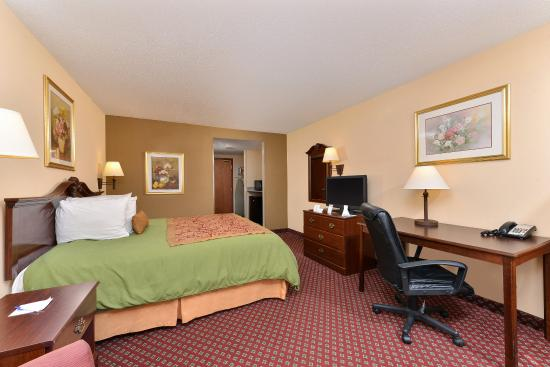 Americas Best Value Inn & Suites Augusta/Garden City : One King Bed Accessible Guest Room