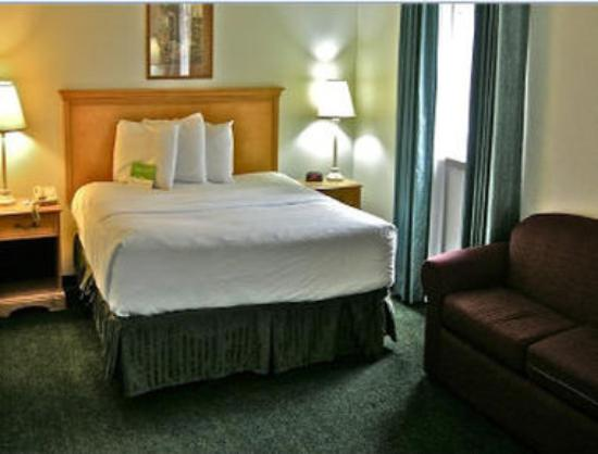 Baymont Inn & Suites Coeur D Alene: 1 King Bed Room