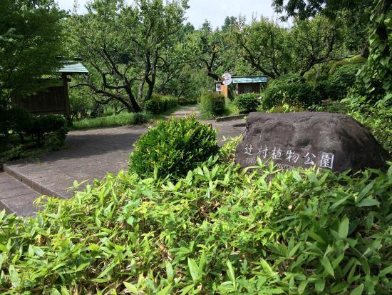 Tsujimura Botanical Garden