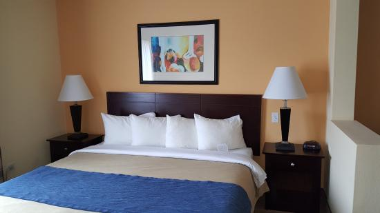 Country Inn & Suites By Carlson, Prospect Heights: Executive King
