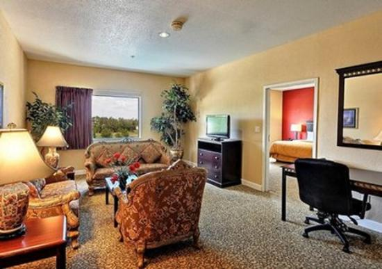 Comfort Suites Near the Woodlands: TXG