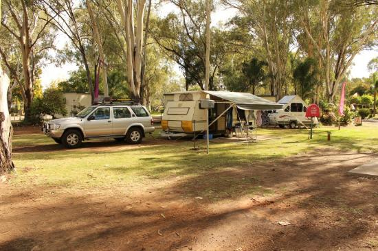 One of many statue's - Picture of Buronga Riverside Caravan
