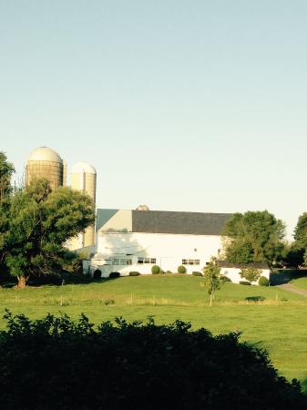 Rayba Acres Farm: Peaceful farm