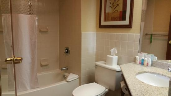 Hampton Inn Reading/Wyomissing: Bathroom