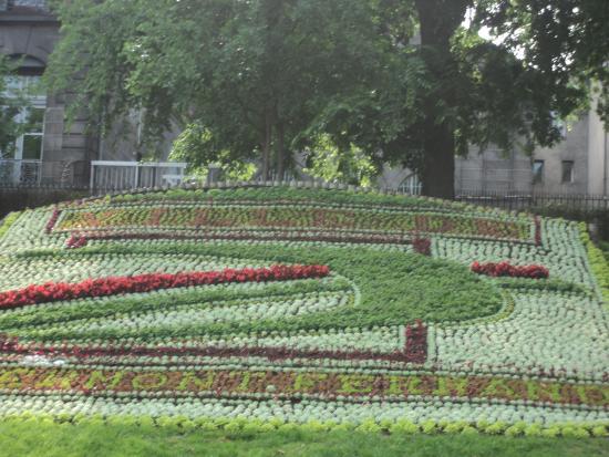 Fleurs2 picture of jardin lecoq clermont ferrand for Jardin lecoq