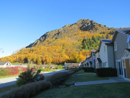 Arrowfield Apartments: Outside