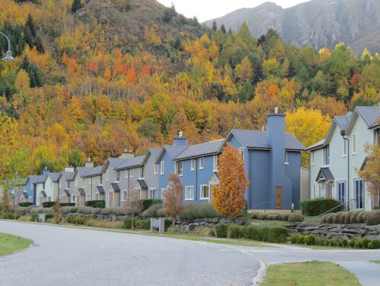 Arrowfield Apartments: Apartments