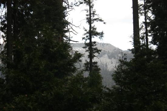 Silver City Mountain Resort: obstructed view of mountains from front porch
