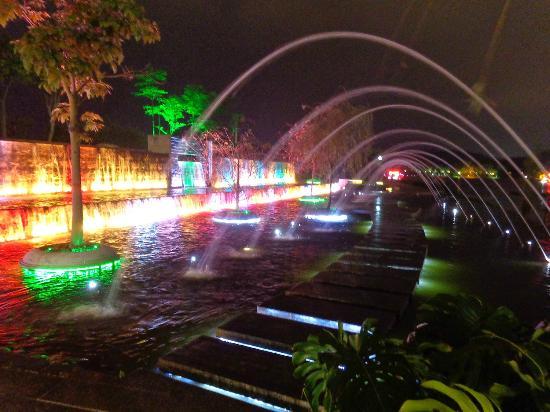 Mandarin Duck Lake Park : подсветка фонтанов