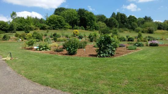 Jardin Botanique Jean-Marie Pelt (Villers-lès-Nancy) : 2019 Ce qu\'il ...