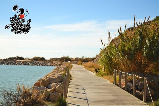 Life is a Beach Barcelona's Uutback Tours - Tour : Acceso a Cala Ginesta