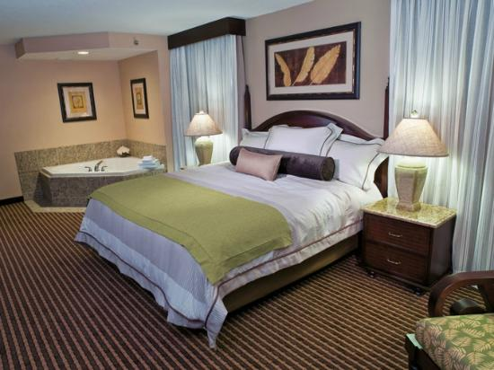 Treasure Island Resort & Casino: Eagle King Suite