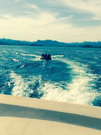 Perfect Boat Rentals