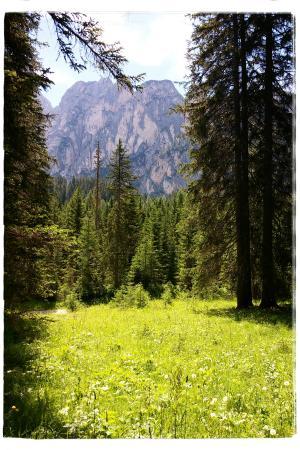 Mountain Residence Montana Foto