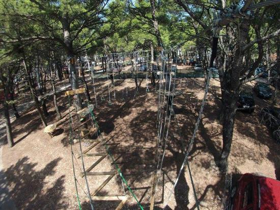 Makarska, Croatie : Tree top poligon
