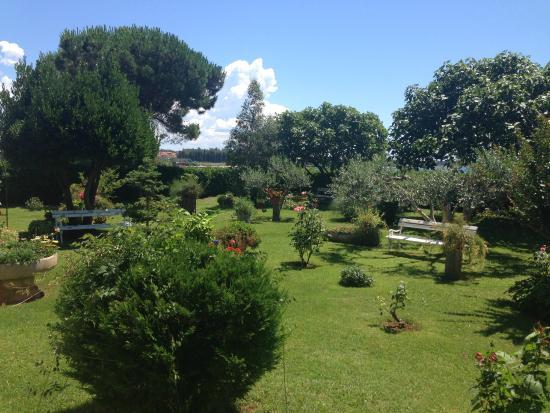 Antonia: giardino