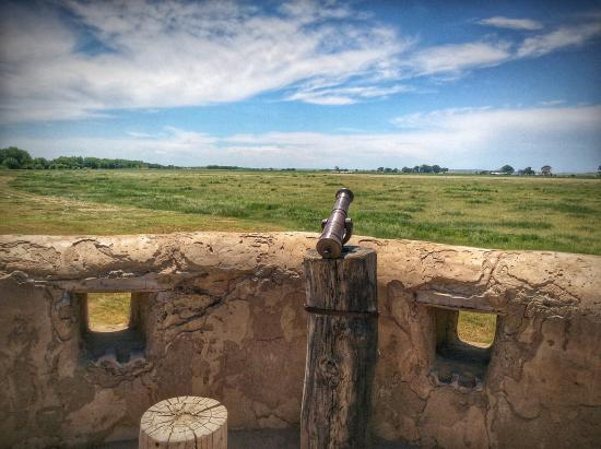 3rd Street Nest Bed & Breakfast: A cannon overlooking the prairie, lots and lots of prairie.