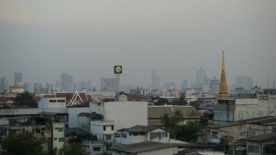 Diamond House: View From Roof 2