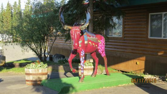 Caribou Hotel : The pretty painted Moose