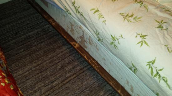 Surfside Inn: Bed