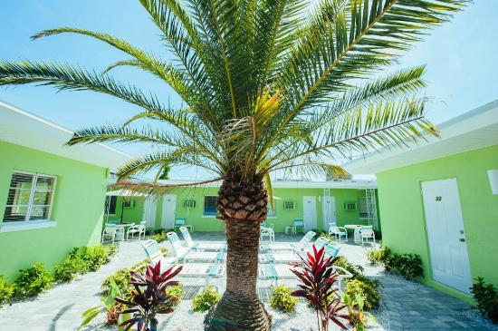 Brightwater Suites on Clearwater Beach : Courtyard area landscaping