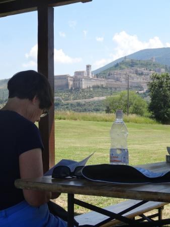 Azienda Agraria Saio: View from the picnic shelter